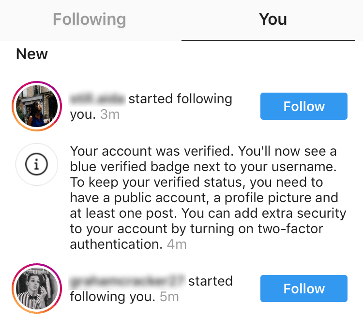 how to get verified on instagram - approval notification