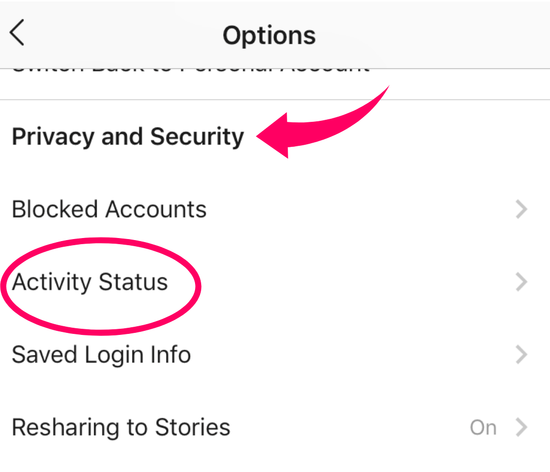 new instagram update - activity status