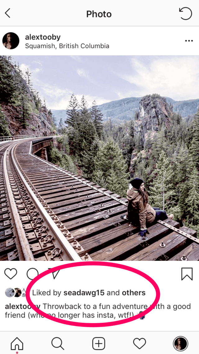 Hiding Instagram Likes - view from profile